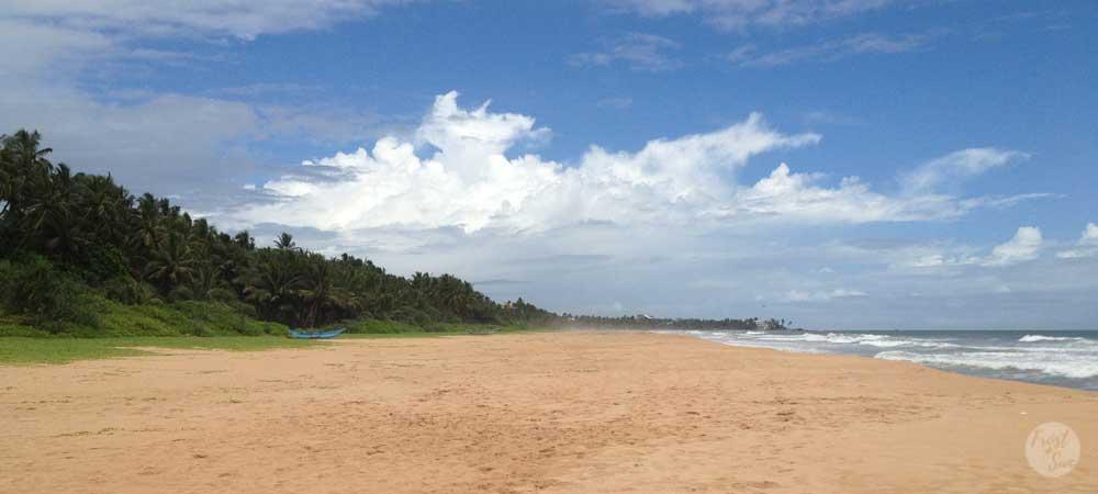 Visit uncrowded beaches in Bentota, Sri Lanka