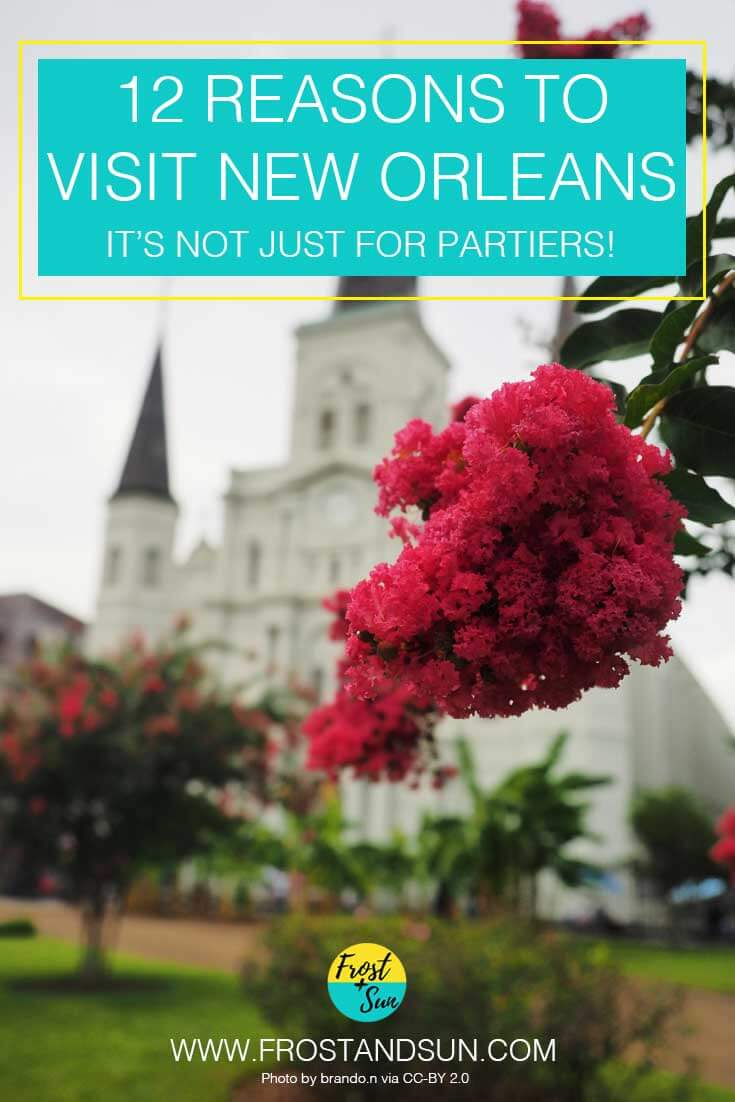 12 reasons to visit New Orleans. It's not just for partiers!
