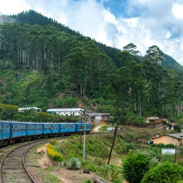 Roll through Sri Lanka via train and see it's pretty countryside. Bonus: Make your friends jealous with a selfie on Sri Lanka's popular blue trains.