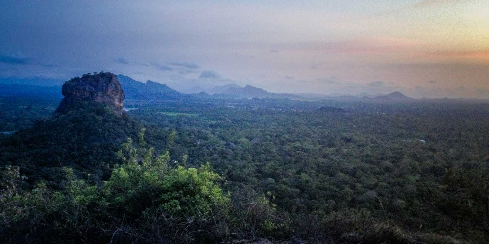 View from the top of Pidurangala Rock at sunset with lots of green trees and Sigiriya Rock in the distance.
