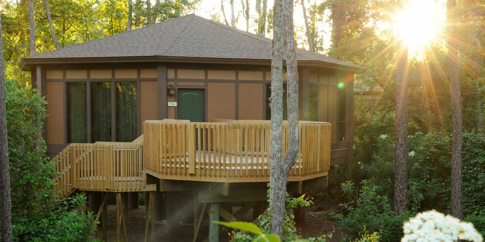 Landscape view of the treehouse villas at Saratoga Springs Resort at Disney World.