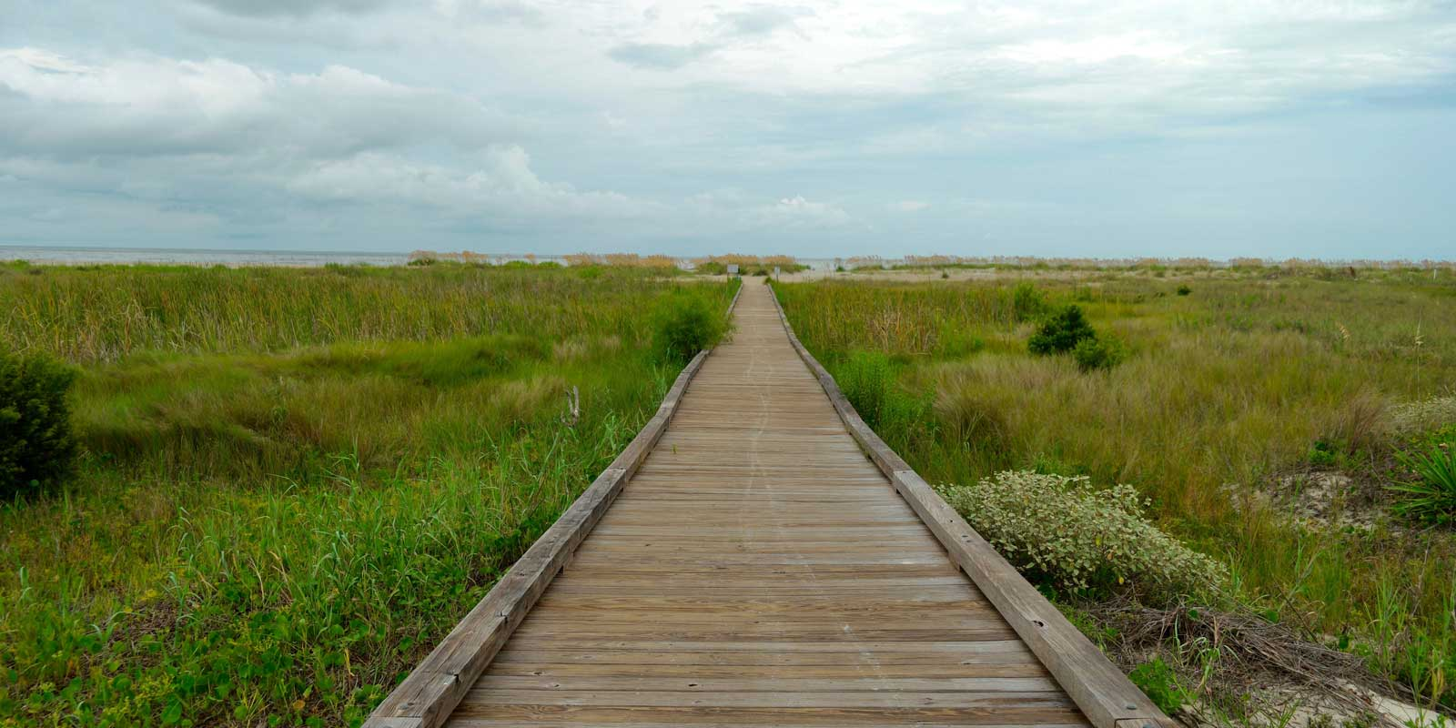 Landscape view of a boardwalk cutting through seagrass in Hilton Head, SC.