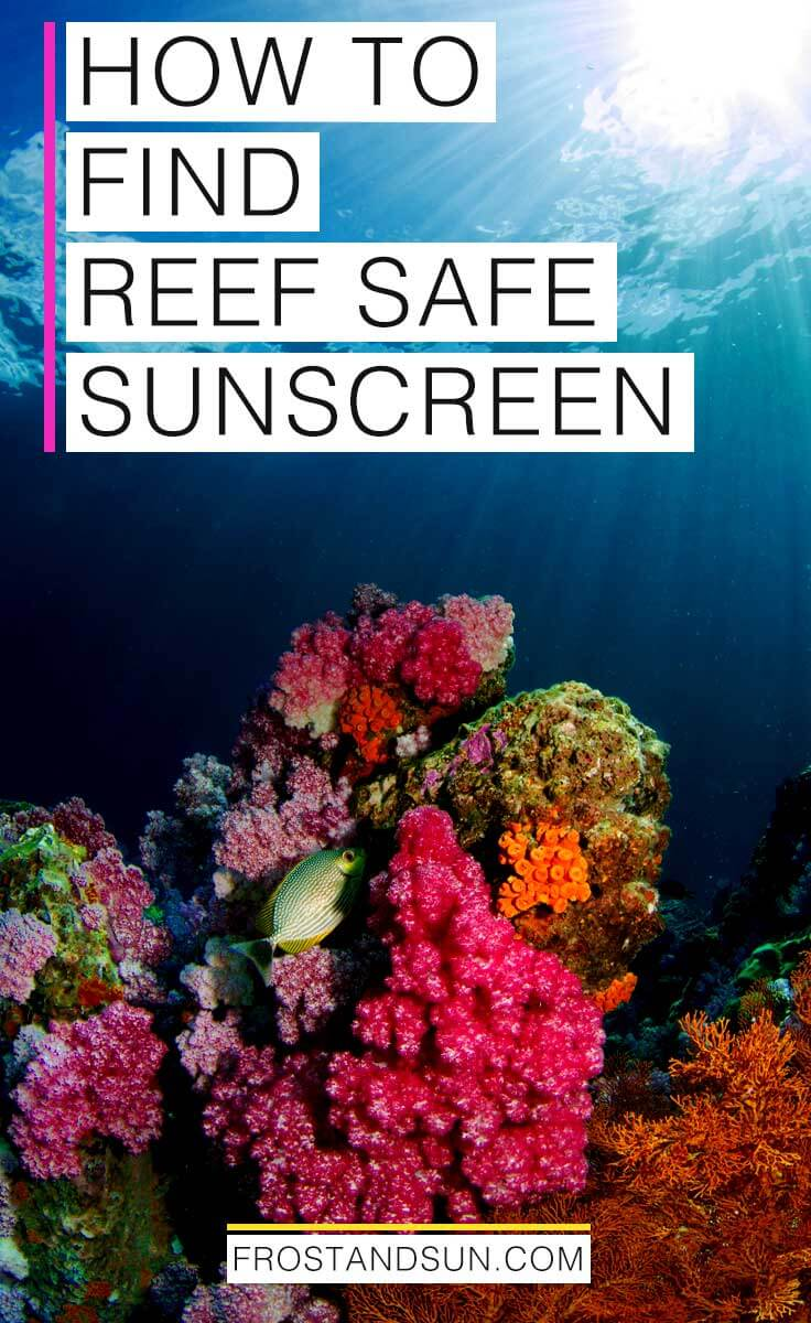 A Quick Guide to Reef Safe Sunscreen