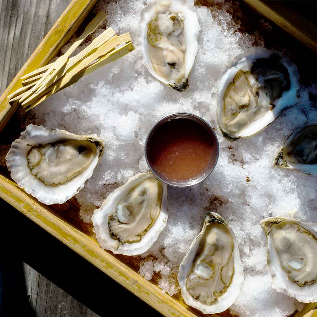 Flat lay photograph of oysters on a half shell arranged atop a bed of ice with a container of red sauce in the middle.