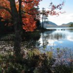 The Best Things to Do in Acadia National Park
