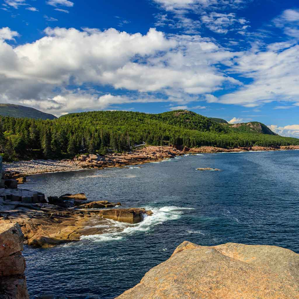 View from Park Loop Road looking onto evergreen trees, rocky shoreline, and crashing waves.