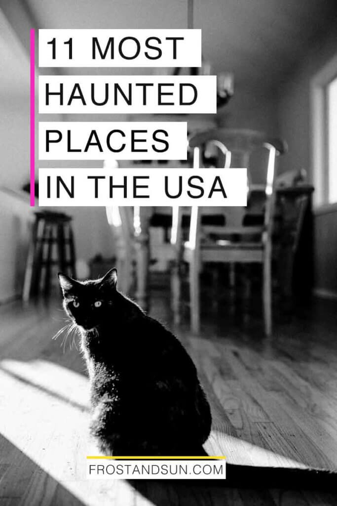 "Black and white photograph of a black cat sitting in a dining room. Overlying text reads ""11 Most Haunted Places in the USA."""
