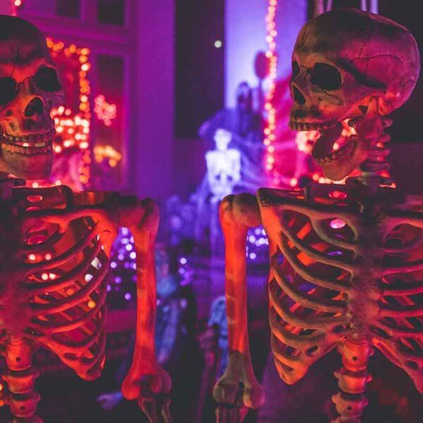 Closeup of 2 faux human skeletons posed looking at each other, with one screaming.