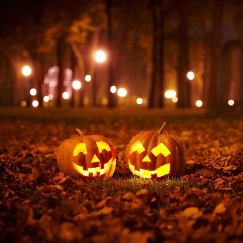 Photo of 2 carved pumpkins artfully arranged amongst fallen leaves at night.