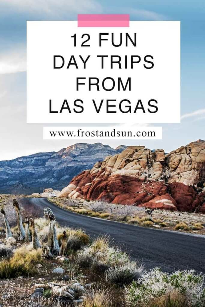 """Closeup of a road running through a desert landscape with cacti and rocky cliffs. Overlying text reads """"12 Fun Day Trips from Las Vegas."""""""