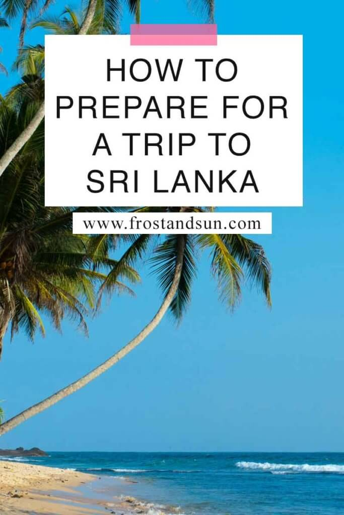 "Closeup of coconut trees growing on a tropical beach. Overlying text reads ""How to Prepare for a Trip to Sri Lanka."""
