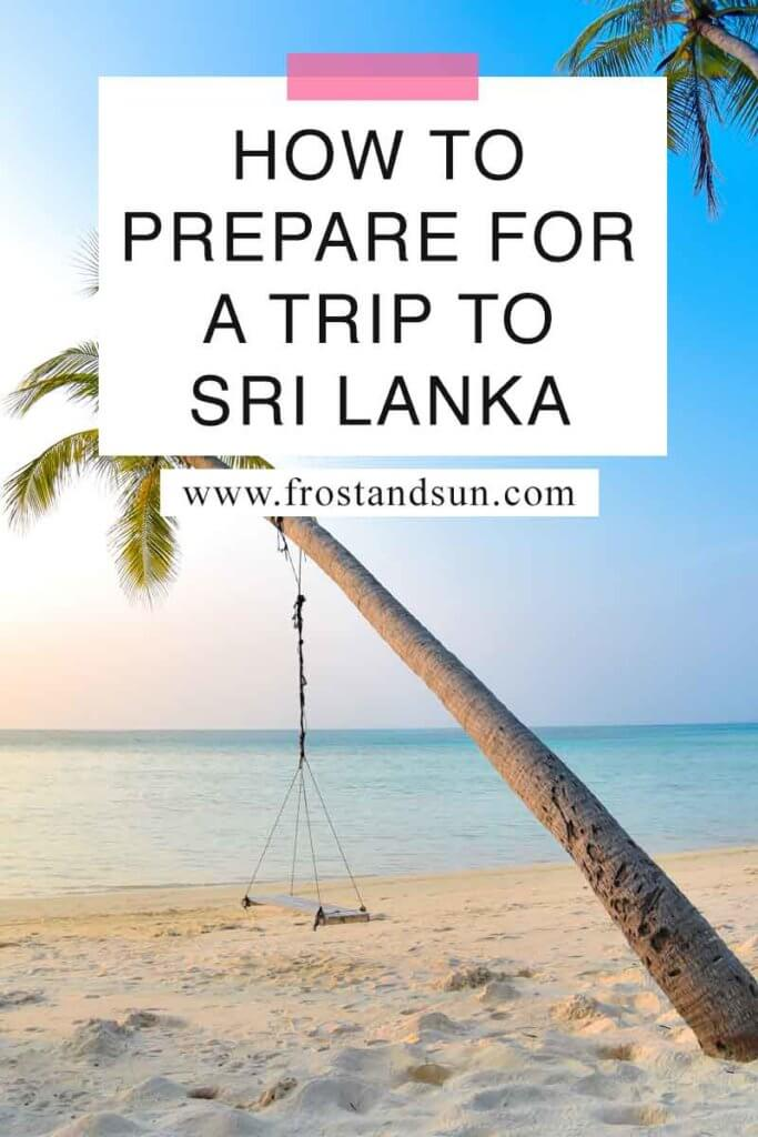 "Photo of a swing hanging off of a coconut tree on a beach. Overlying text reads ""How to Prepare for a Trip to Sri Lanka."""
