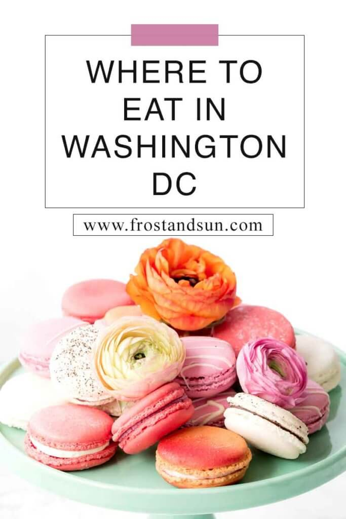 "Closeup of a plate of pink and orange macarons and flower garnish. Overlying text reads ""Where to Eat in Washington, DC."""