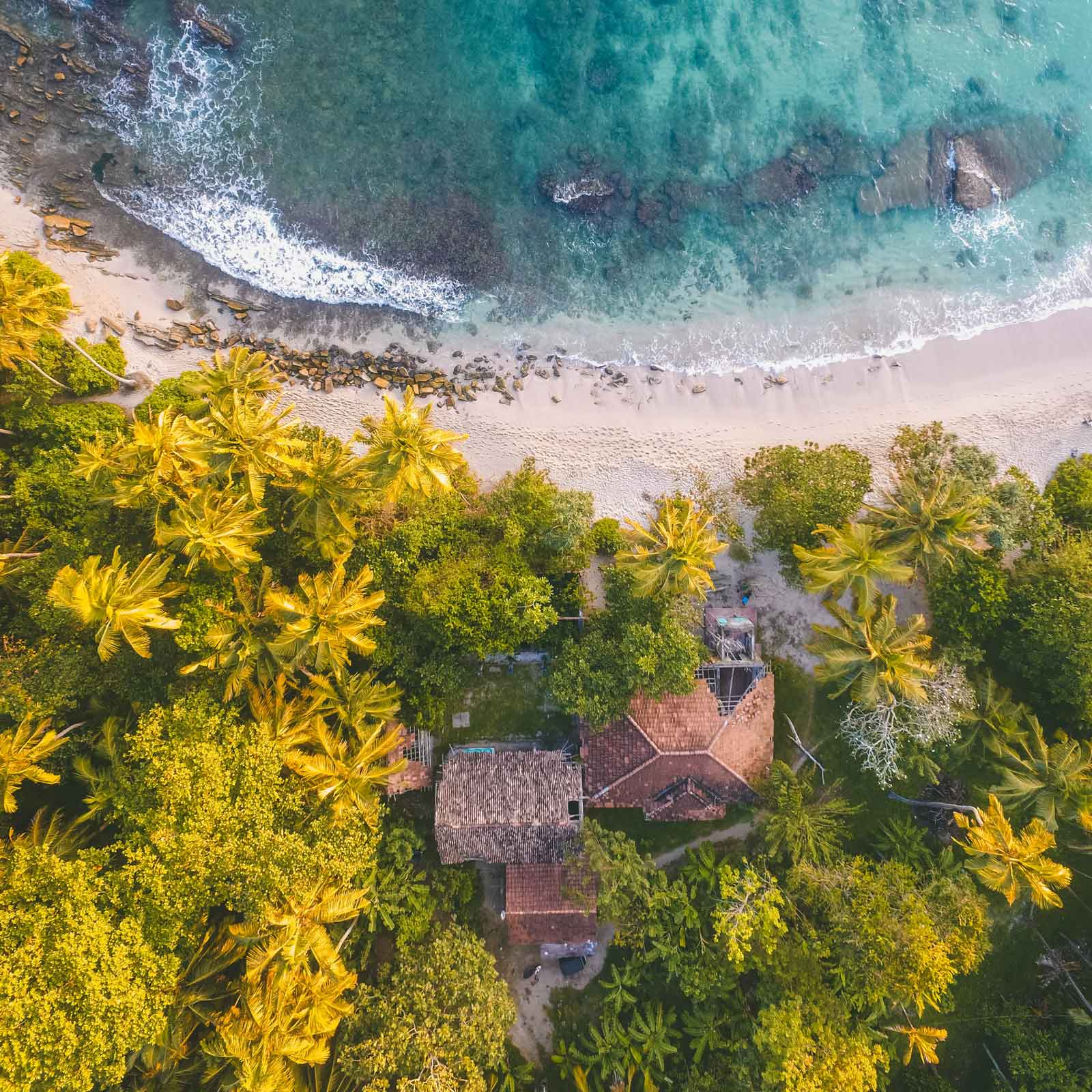 Aerial photo of the roof of a house amidst palm trees and a rocky beach with turquoise waters.