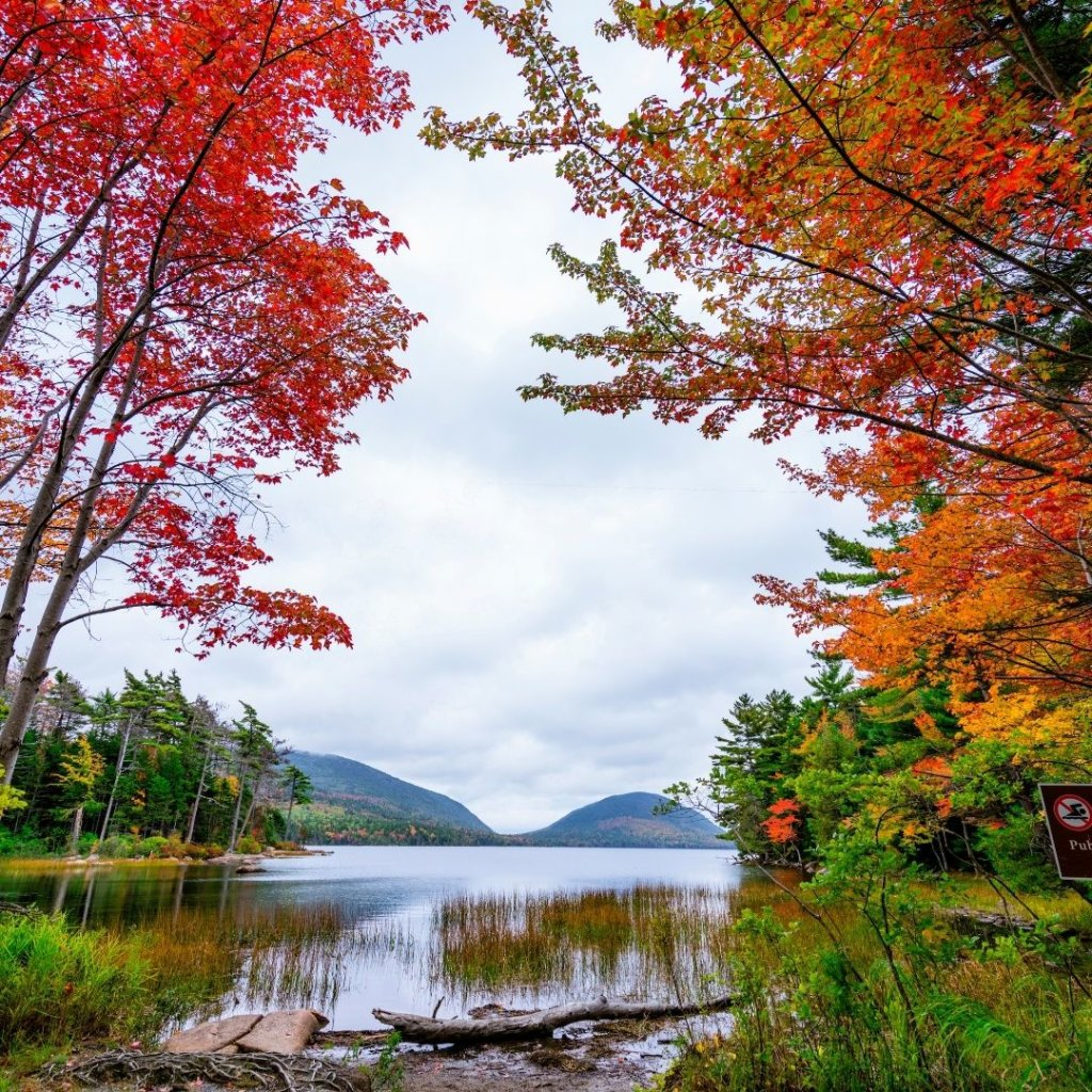 Photo of a pond in Bar Harbor, framed by orange, red, and yellow Fall foliage.