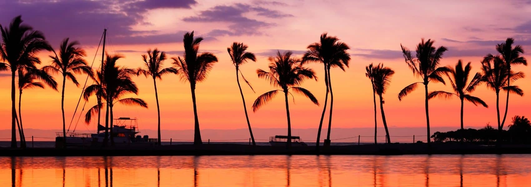 Silhouettes of palm trees with water in the foreground and a purple and red sunset in the background.