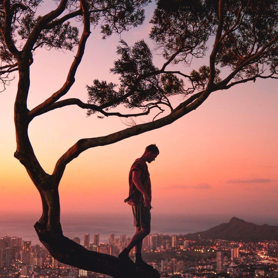 Photo of a man standing on a tree branch, overlooking the city of Honolulu, Hawaii, during sunset.