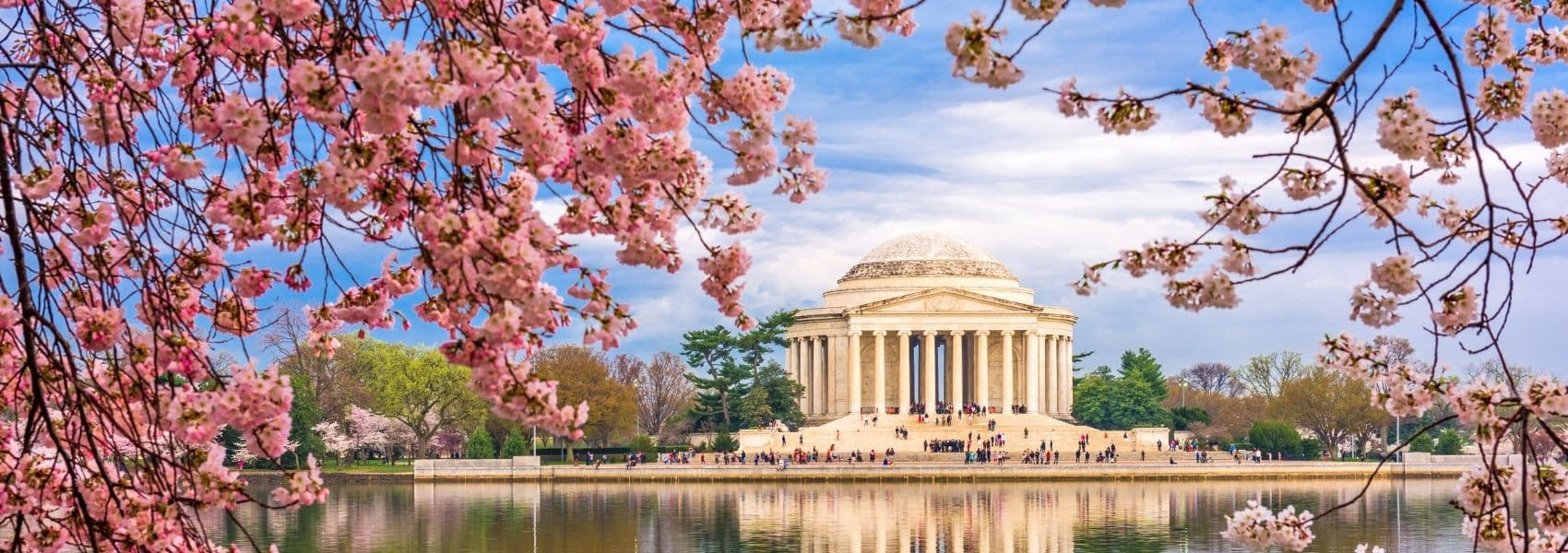 Photo of Jefferson Memorial in Washington, DC from across the Tidal Basin with blossoming cherry blossom trees in the foreground.