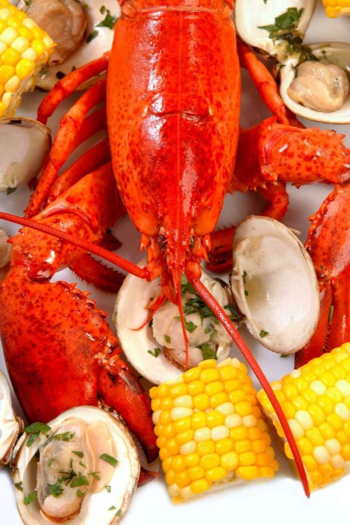 Flatlay photo of a fresh steamed lobster, clams, and corn on the cob.