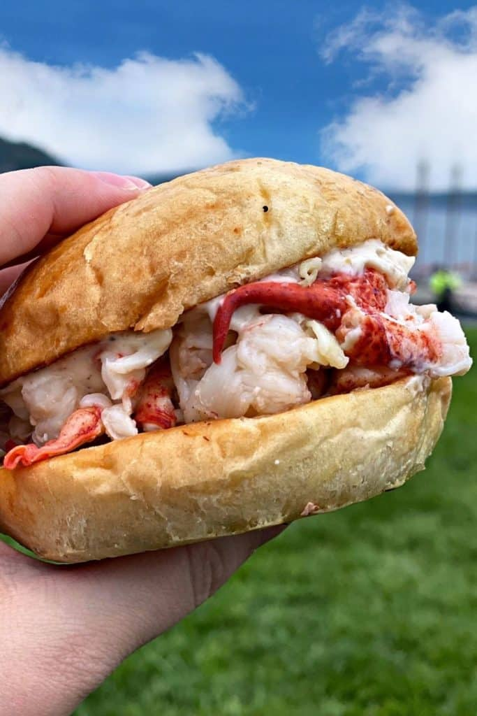 Closeup of a fresh lobster roll from The Stadium in Bar Harbor, ME.
