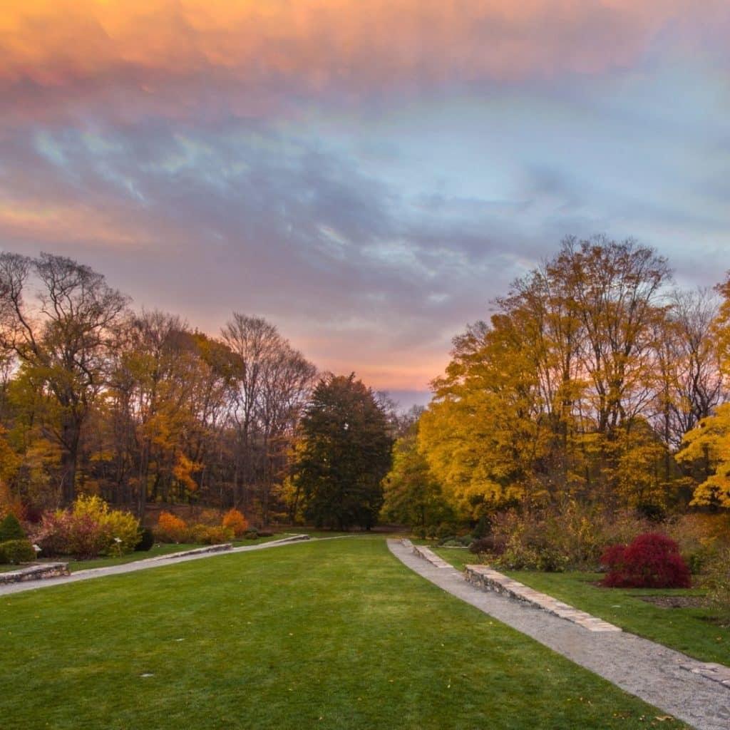 Photo of Fall foliage at the Harvard Arnold Arboretum in Boston, MA.