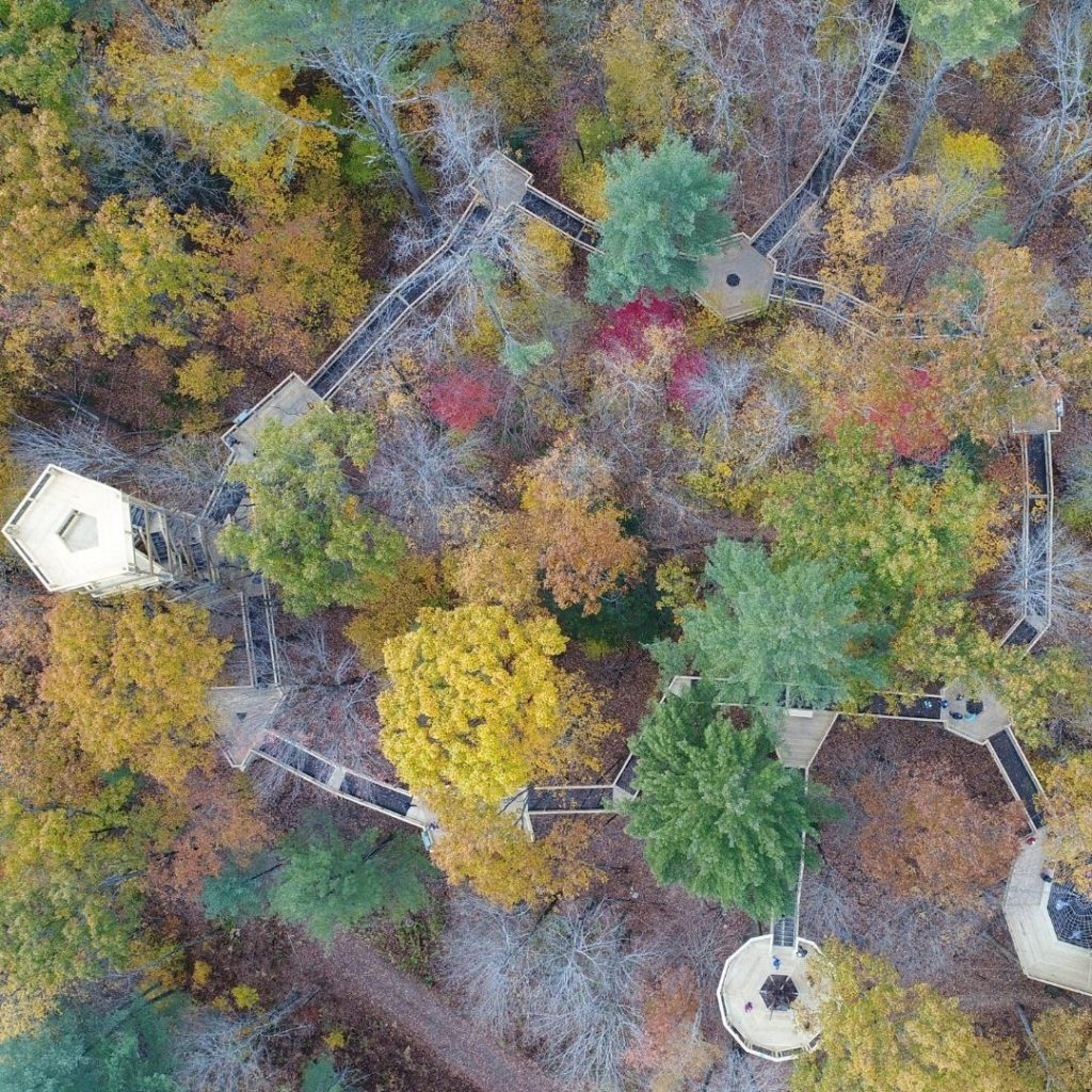 Aerial view of the canopy walk at the Vermont Institute of Natural Science in the Fall.