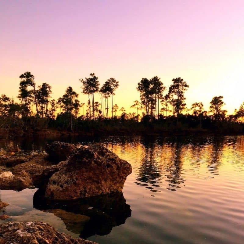 Photo of shoreline in Everglades National Park during sunset.