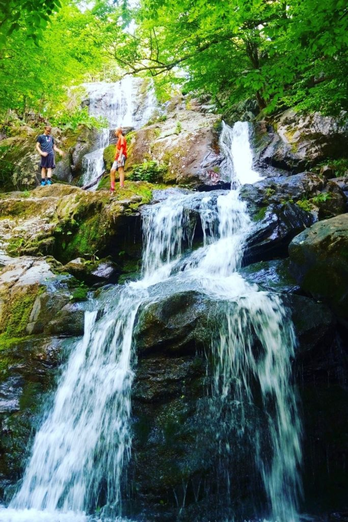 Photo of a small waterfall in a wooded area at Shenandoah National Park.