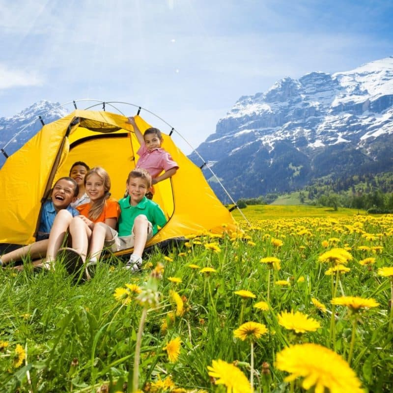Photo of 5 kids hanging out in a tent in a field of dandelions with mountains in the background.