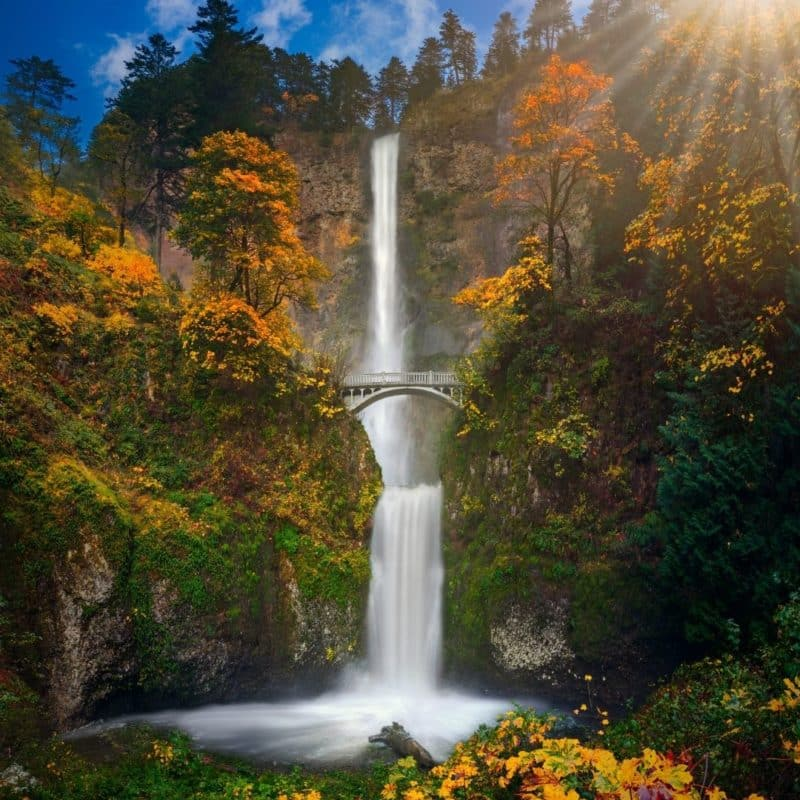 Photo of Multnomah Falls in Oregon with orange and yellow leaves on the trees.