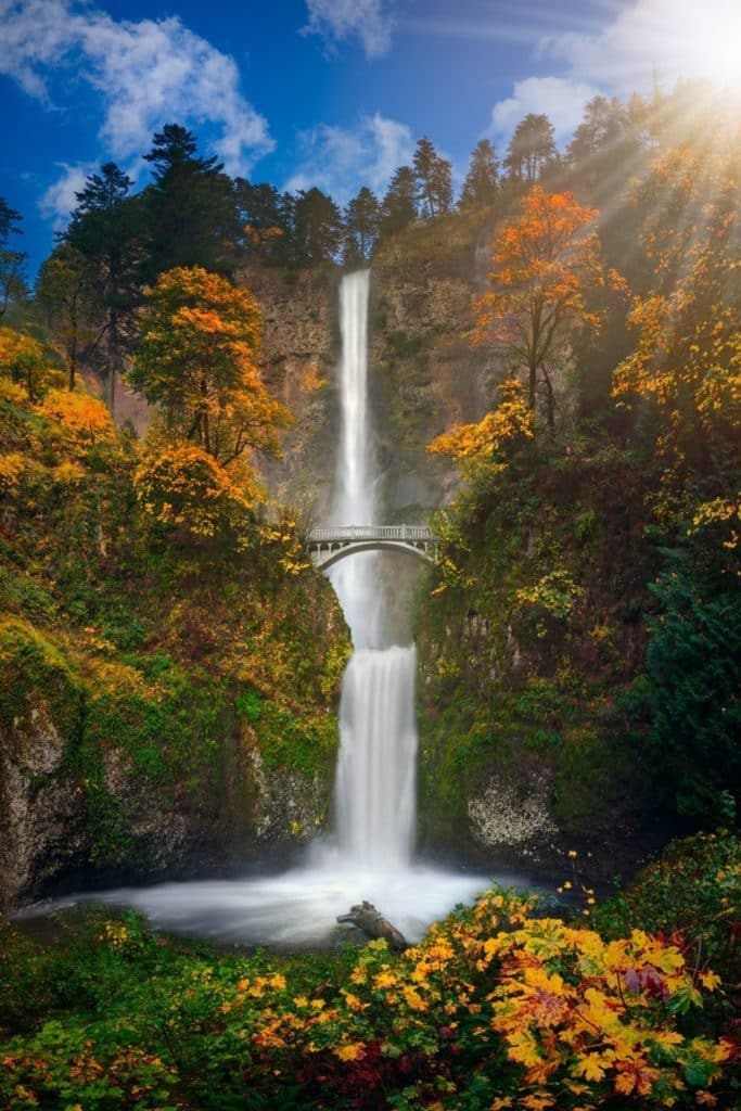Photo of Multnomah Falls from the bottom of the waterfall with Fall foliage surrounding the entire area.