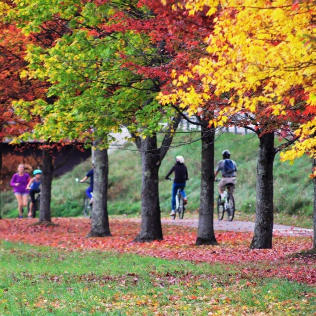 Photo of runners and bikers on the Stowe VT recreation path.