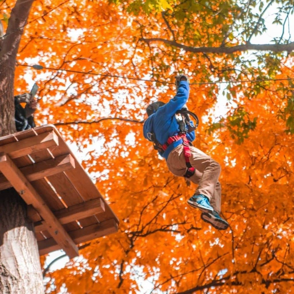 Photo from the ground of a child ziplining beneath orange Fall foliage at The Adventure Park in Storrs, CT.