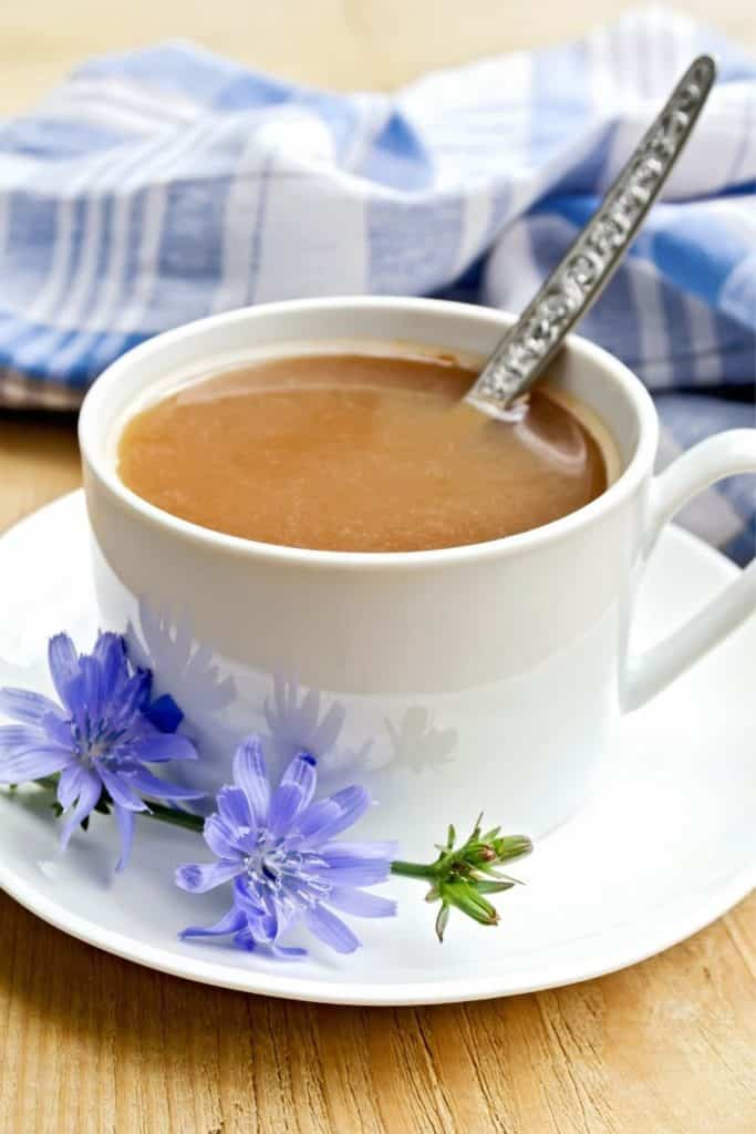 Closeup of a cafe au lait with chicory root flower next to the cup.